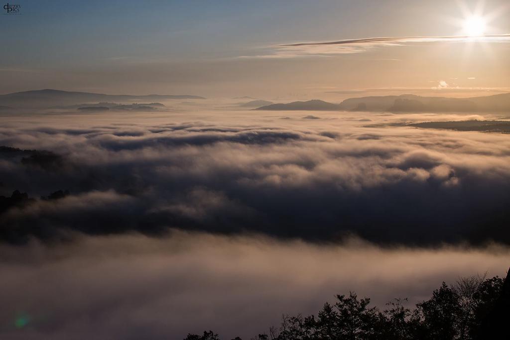 Die Sonne strahlt über dem Nebelmeer im Elbtal