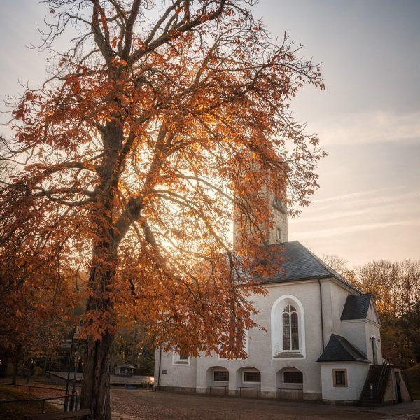 Garnisonskirche im Morgenlicht
